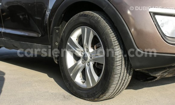 Buy Import Kia Sportage Brown Car in Import - Dubai in Kailahun