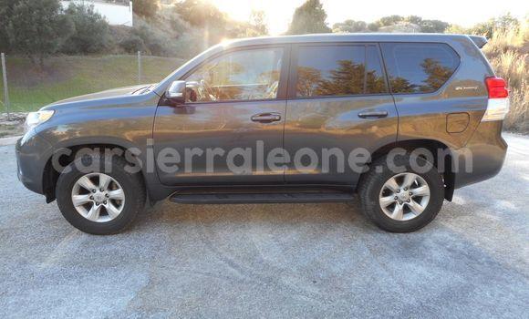 Buy Used Toyota Land Cruiser Prado Beige Car in Freetown in Western Urban