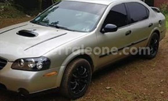 Buy Used Nissan Maxima Silver Car in Freetown in Western Urban