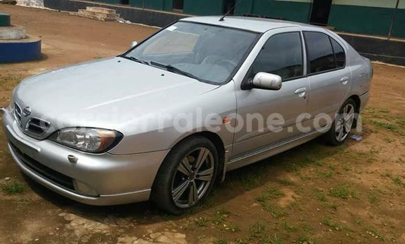 Buy Used Nissan Primera Silver Car in Freetown in Western Urban